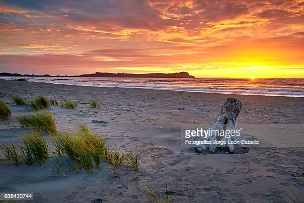 pangal beach - maullin - sunset beach stock photos and pictures