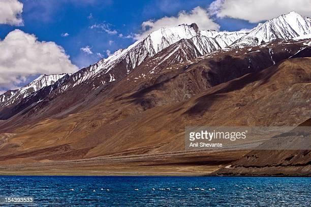 Pangong Tso, Leh-Ladakh!!