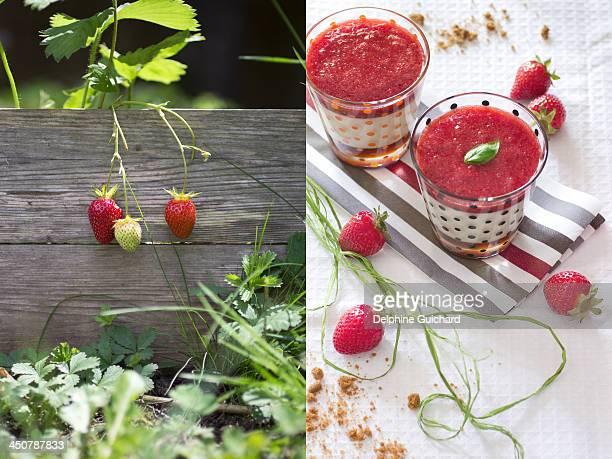 Panna cotta à la ricotta, fraises et caramel cafe