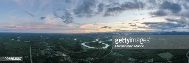panorama aerial view of the klias river at peat swamp forest of peatland forest in beaufort sabah borneo malaysia. - dipterocarp tree stock pictures, royalty-free photos & images