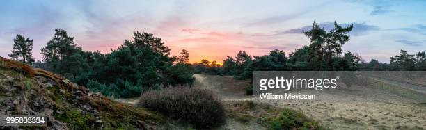 panorama 'boshuizerbergen sunrise' - william mevissen foto e immagini stock
