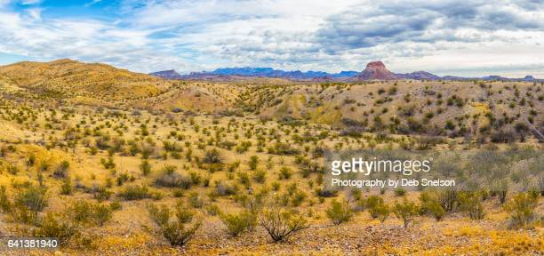 panorama chihuahuan desert and nugent mountain - chihuahua desert stock pictures, royalty-free photos & images