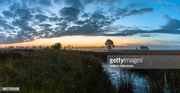 panorama 'cloudy misty morning' - william mevissen stockfoto's en -beelden