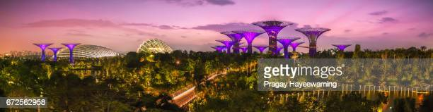 panorama gardens by the bay, singapore - marina bay sands skypark stock pictures, royalty-free photos & images