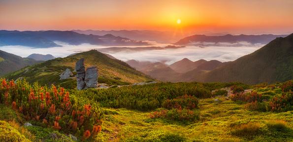 Panorama of a beautiful sunrise Panorama of a beautiful sunrise in the mountainsin the mountains - gettyimageskorea