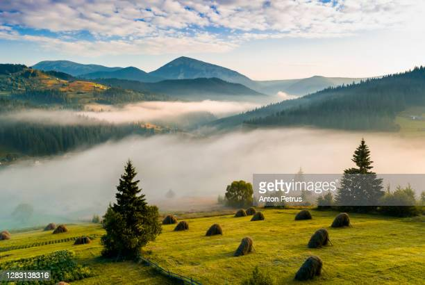 panorama of a misty dawn in the mountains. beautiful landscape - romania stock pictures, royalty-free photos & images