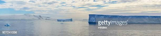 Panorama of Antarctic Sound with Floating Tabular Icebergs