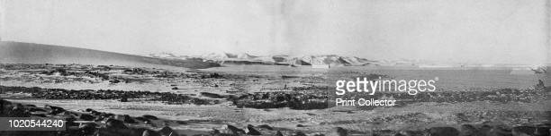 A Panorama of Cape Roberts Where The Western Party Was Isolated for Three Weeks Looking North' circa 1911 Landmarks Piedmont Glacier Mount Marston...