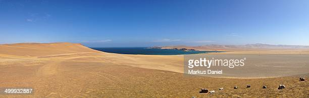 Panorama of Desert Coast in Paracas Peninsula
