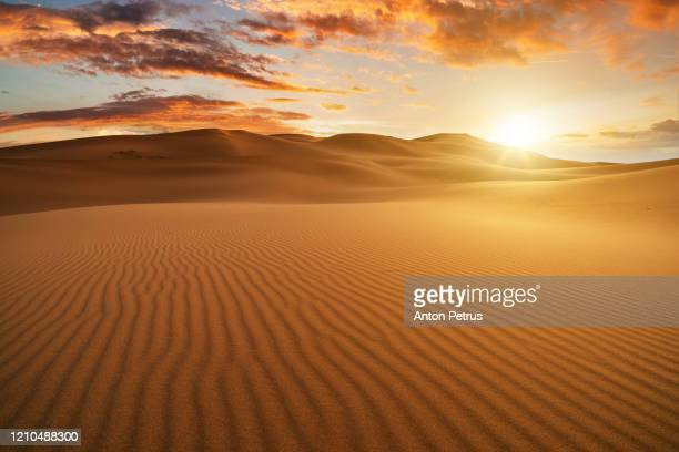 panorama of dramatic sunset in the desert. sand dunes against a beautiful sky - 砂漠 ストックフォトと画像