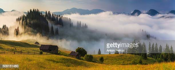 panorama of foggy sunrise in the mountains - ukraine landscape stock pictures, royalty-free photos & images