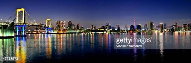 Panorama of glittering Tokyo at twilight