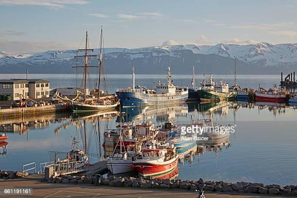 panorama of husavik harbour in iceland - husavik stock photos and pictures