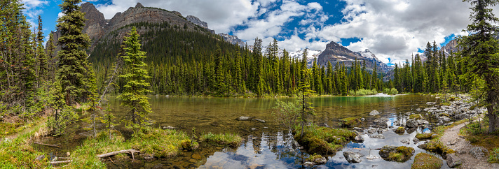 Panorama of Lake Ohara hiking trail in cloudy day in Spring, Yoho, Canada. 1095713516