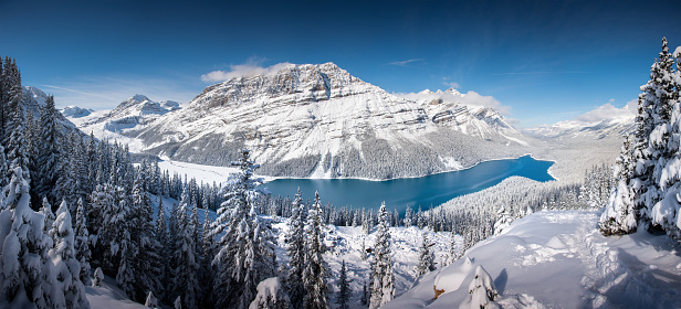 Panorama of landscape winter mountains and snow , peyto lake , banff , alberta , Canada - gettyimageskorea