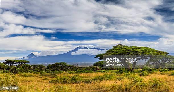 Panorama of Mount Kilimanjaro