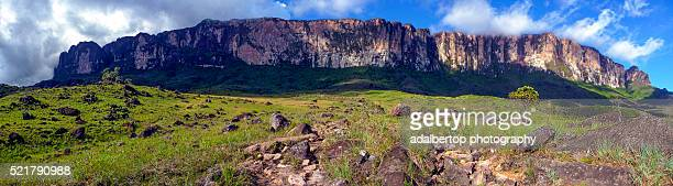 Panorama of Mount Roraima / Roraima Tepui