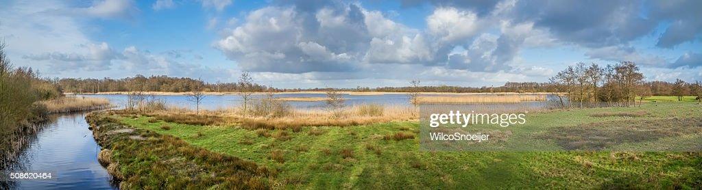 Panorama of national park Weerribben-Wieden : Stock Photo