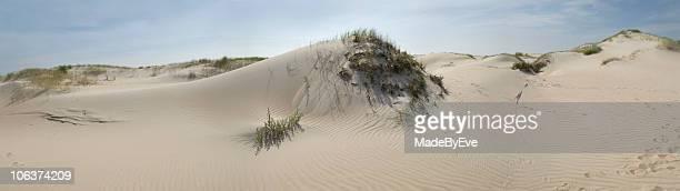 Panorama of sand dunes