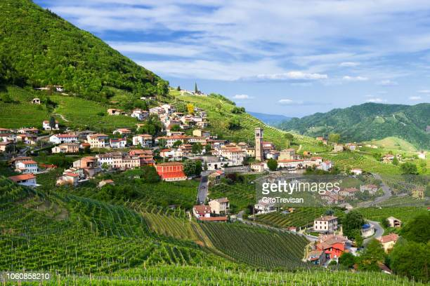 Panorama of Santo Stefano-Valdobbiadene (TV) land Prosecco vineyards in spring