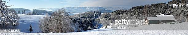Panorama of the Black Forest
