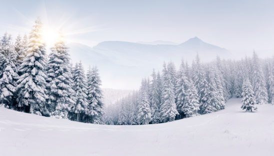Panorama of the foggy winter mountains 455011625