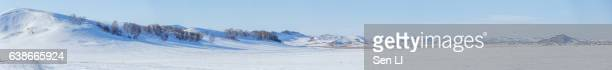 panorama of the sonwfield in inner mongolia - snowfield stock pictures, royalty-free photos & images