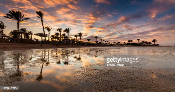 Panorama of the sunset on the sandy beach. Red Sea, Egypt