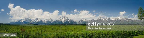 a panorama of the willow flats, lake jackson, and the grand teton mountains. - ティトン山脈 ストックフォトと画像