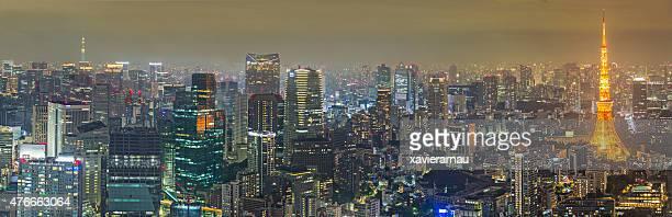 パノラマに広がる東京