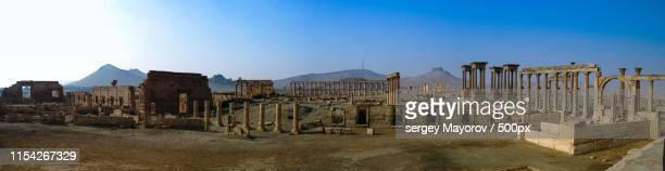 panorama palmyra columns and ancient city, destroyed by isis, syria - palmyra foto e immagini stock