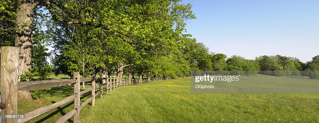 Panorama photo of a green field and fence with trees : Stock Photo