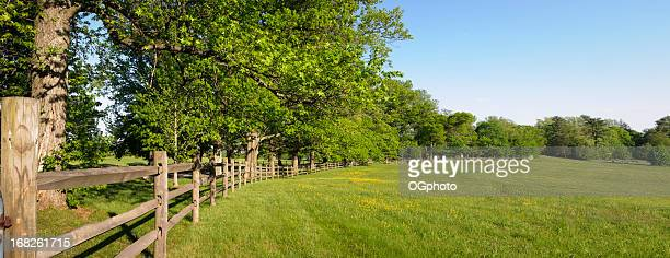 Panorama photo of a green field and fence with trees