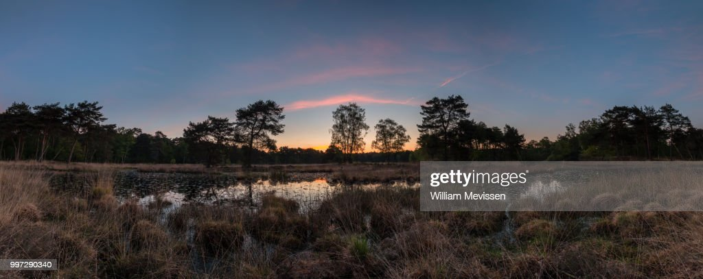 Panorama 'Pink Silence' : Stock Photo