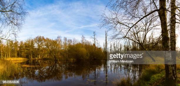panorama 'reflections' - william mevissen stockfoto's en -beelden