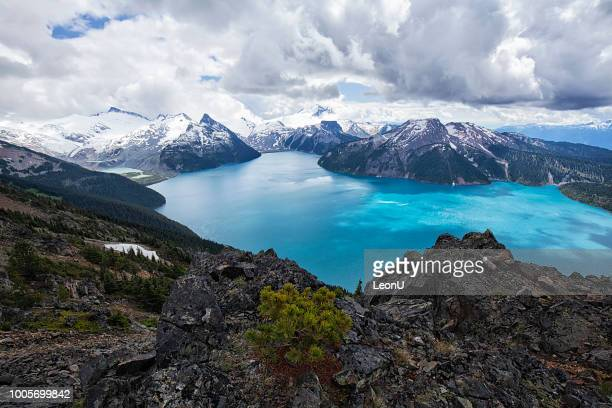 panorama ridge in summer, bc, canada - british columbia stock pictures, royalty-free photos & images