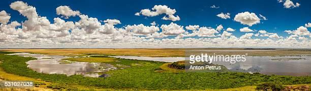 Panorama savanna
