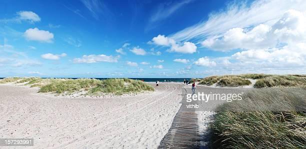 Panorama view of beach with boardwalk in Skagen denmark (XL)