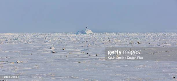 Panorama view of frozen sea ice with an igloo in the background, Barrow, North Slope, Arctic Alaska, Winter