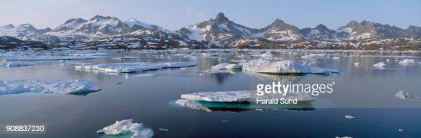 Panorama view of icebergs floating in a bay with mountains in the background.