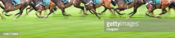 panorama view of race horses - horse racing stock pictures, royalty-free photos & images