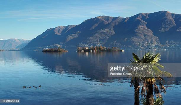 panorama view of the brissago islands on lake maggiore, switzerland - ascona stock photos and pictures
