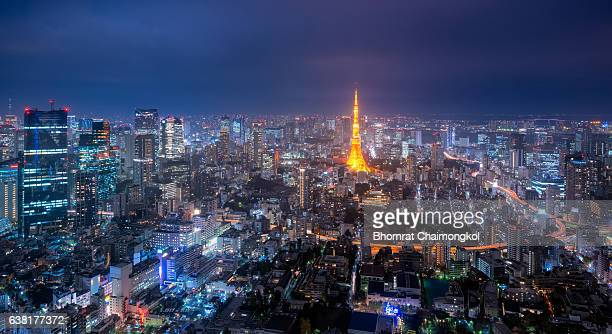 Panorama view over Tokyo tower and Tokyo cityscape