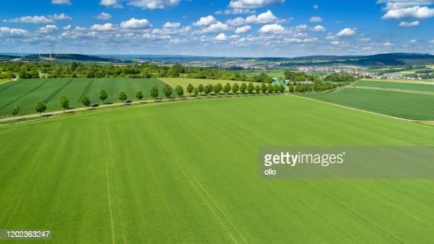 panoramic aerial view of german landscape - rheingau-taunus area - grano graminacee foto e immagini stock