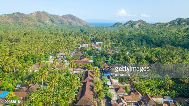 Panoramic aerial view of residential area in Bali, Indonesia.