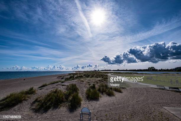 panoramic amager strandpark, copenhagen, denmark - vsojoy stock pictures, royalty-free photos & images