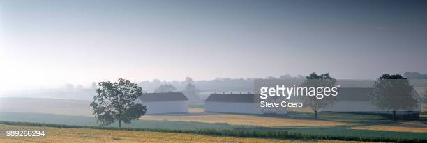 panoramic barns in morning mist - lancaster pennsylvania stock pictures, royalty-free photos & images