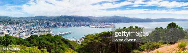 panoramic cityscape of wellington, new zealand - wellington new zealand stock photos and pictures