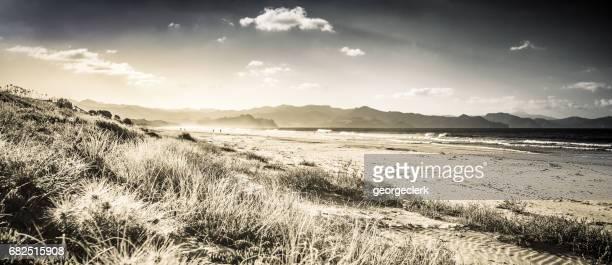 Panoramic Coast