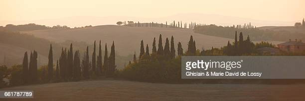 Panoramic hilly landscape in mist, Tuscany, Italy
